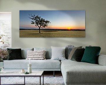 Sunset @ te Dunes II van Marc Smits