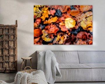 Herfstblaadjes van Marieke van der Doef