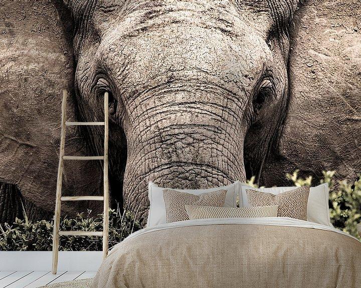 Sfeerimpressie behang: Portret van een wilde olifant van heel dichtbij van Heleen van de Ven