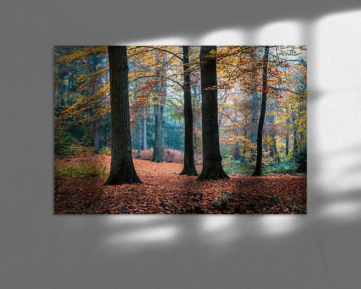 Sfeerimpressie: Autumn Trees van William Mevissen
