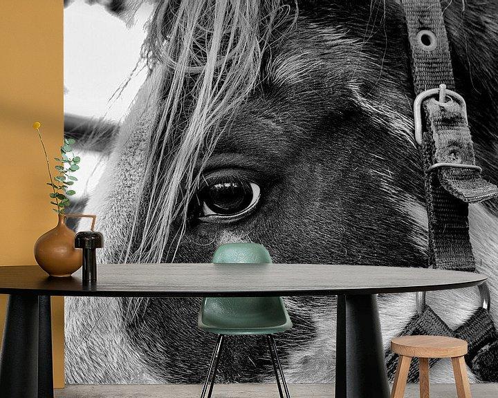 Sfeerimpressie behang: Zie mij eens! van Jan Sportel Photography
