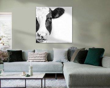 Kuh-Portrait in Schwarzweiß von Heleen van de Ven