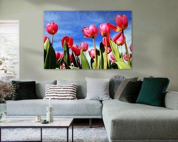 Typisch Hollandse tulpen van Heleen van de Ven