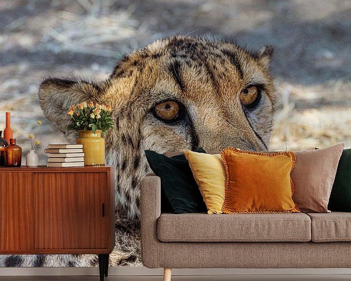Sfeerimpressie behang: Kop van een Cheetah, Namibië van Rietje Bulthuis