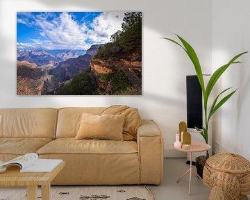 The great Grand Canyon van Ton Kool