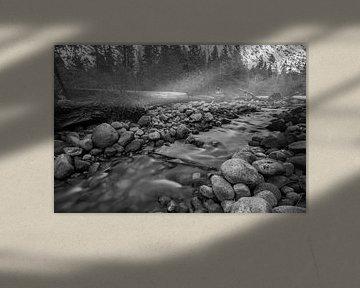 Misty river van Ton Kool