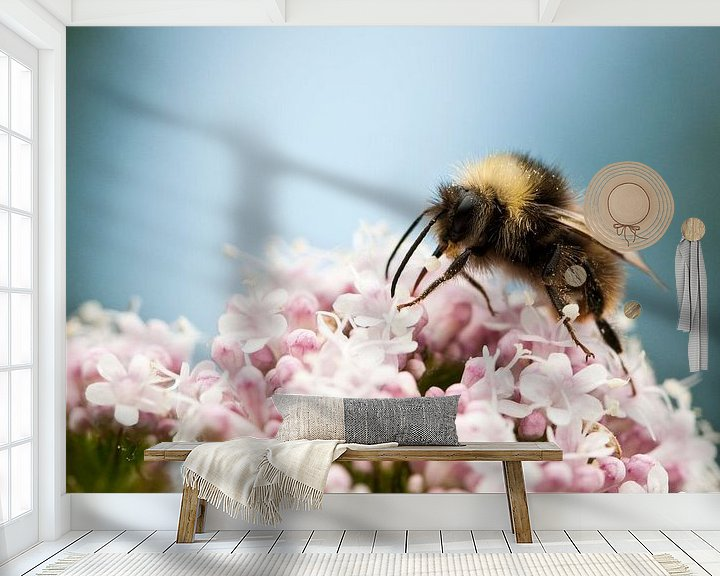 Sfeerimpressie behang: Hommel zit op roze bloem van Caroline Piek