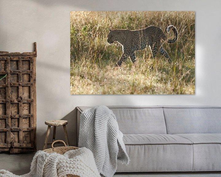 Sfeerimpressie: Luipaard loopt door het natte gras in tegenlicht van Caroline Piek