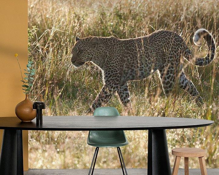 Sfeerimpressie behang: Luipaard loopt door het natte gras in tegenlicht van Caroline Piek