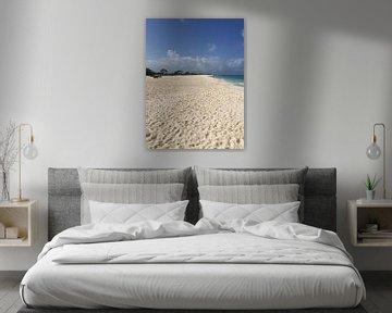 Klein Curacao, paradijselijk strand sur Patsy Van den Broeck