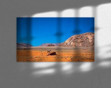 Twee spiesbokken uitkijkend over de Namibwoestijn van Rietje Bulthuis