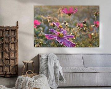 Bloemen von Melanie Weeda