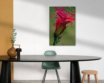 Verf bloem