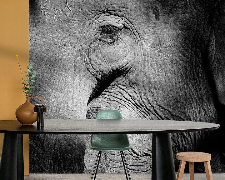 Beispiel fototapete: Elefant von Peter Zeedijk