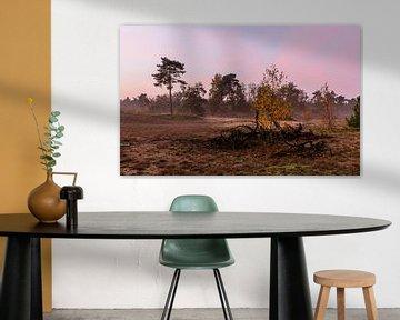 Misty Autumn Twilight  sur William Mevissen