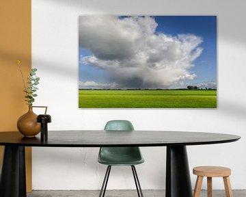 Wolkenlucht boven de weilanden van Sjoerd van der Wal