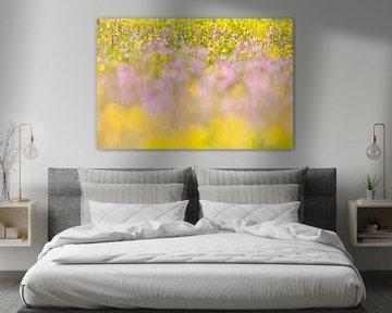 Zee van paarse en gele bloeiende bloemen in heemtuin