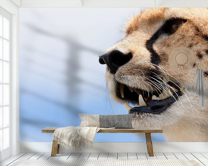 Sfeerimpressie behang: Portret van een cheetah van Caroline Piek