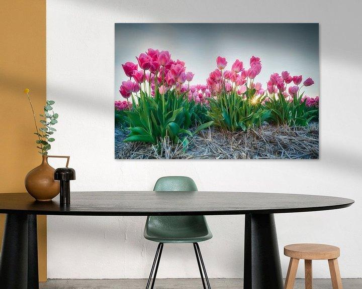 Sfeerimpressie: Zonsondergang tussen de tulpen van Fotografie Egmond