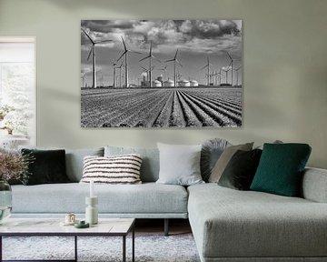 Industriegebied Eemshaven (Nederland)