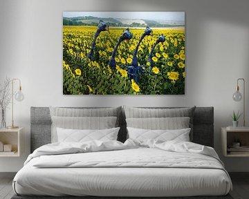 Sunderbirds van Hans van der Pol