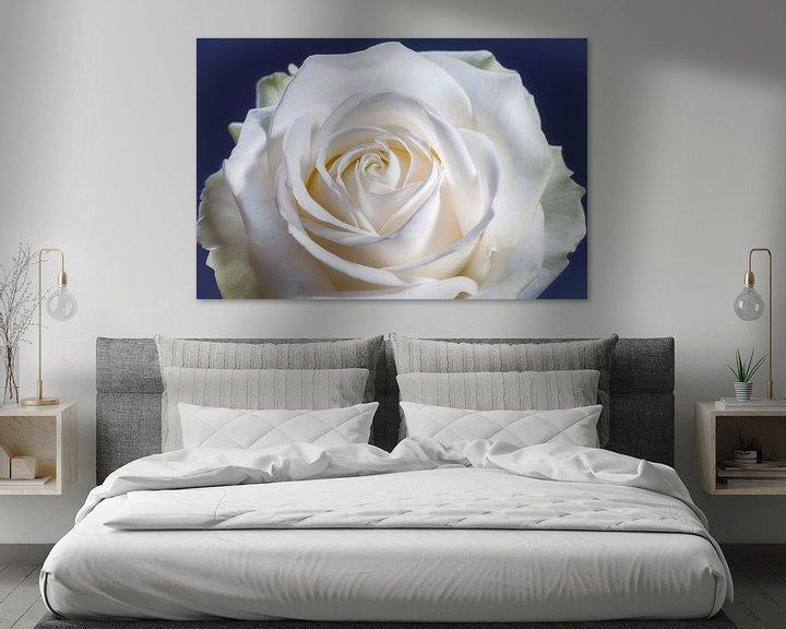 Sfeerimpressie: Witte roos met een hart in het midden van Nicole Jagerman
