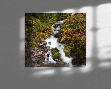 Waterval in Glencoe, Schotland van Johan Zwarthoed