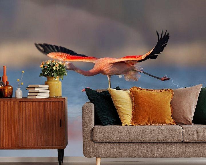 Sfeerimpressie behang: Chileense flamingo van Aldert Verboom
