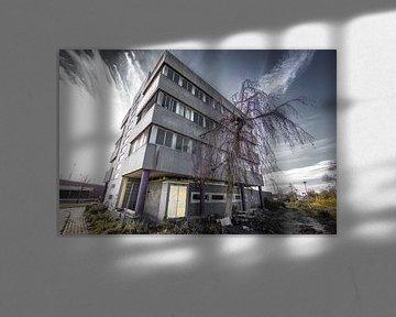Slooppand Nijmegen von denk web