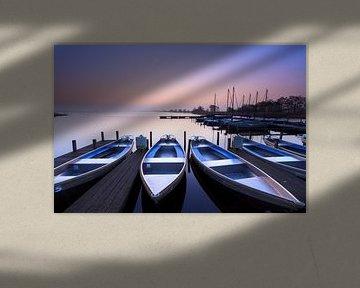 Blauwe zonsopkomst - Leekstermeer, Nederland van Niels Heinis