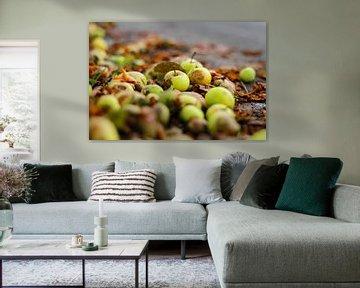 Herfst appeltjes van Petra Brouwer