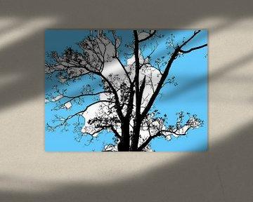 Tree Magic 65 van MoArt (Maurice Heuts)