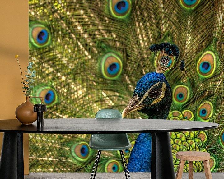 Sfeerimpressie behang: Pauw laat zijn staartveren zien van Michel Vedder Photography