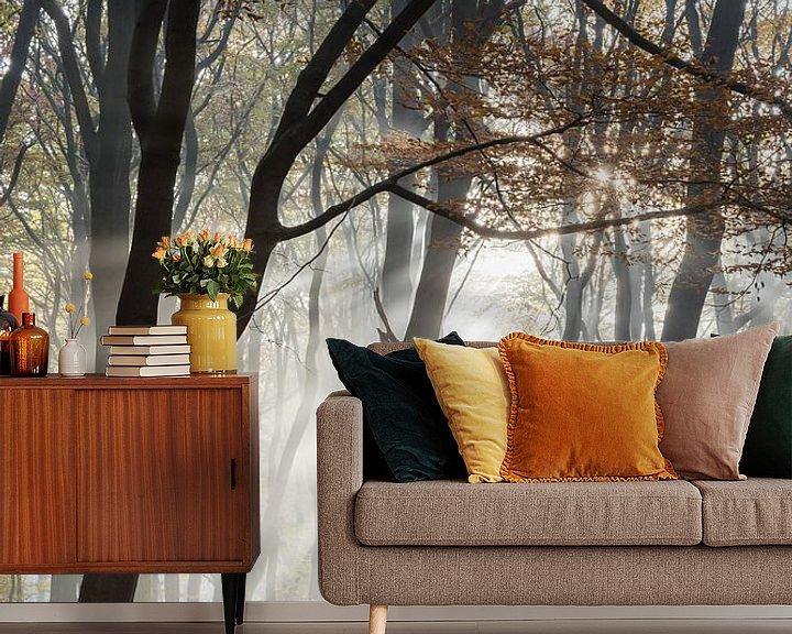 Beispiel fototapete: Frühen Morgen Nebel in den Wald von John Verbruggen
