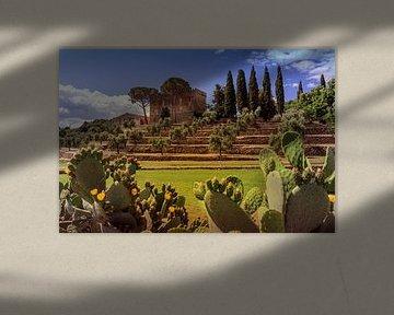 Toscane van Kurt Krause