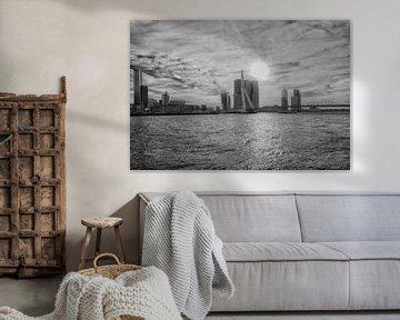 Erasmusbrug Rotterdam in Zwart wit von Brian Morgan