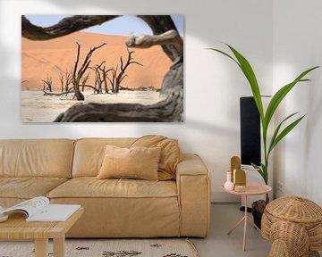 Deadvlei doorkijkje Namibië van Maurits Kuiper
