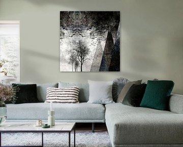 TREES besides MAGIC MOUNTAINS I von Pia Schneider