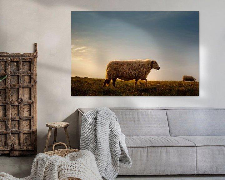 Impression: Sheep on the Dutch Lowlands sur Erwin Plug