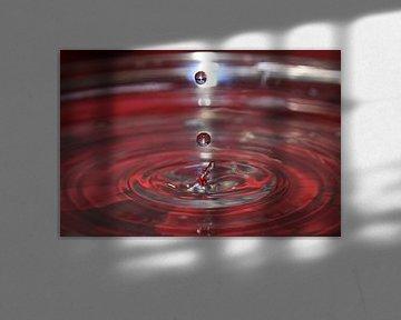 Water. Rood de kleur van de liefde. Balk Friesland van Fotografie Sybrandy