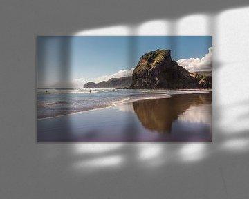 Lion Rock - Piha Beach van Studio W&W