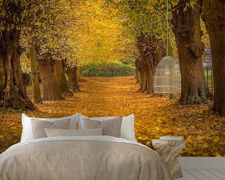 Sfeerimpressie behang: Beautiful autumn van Costas Ganasos