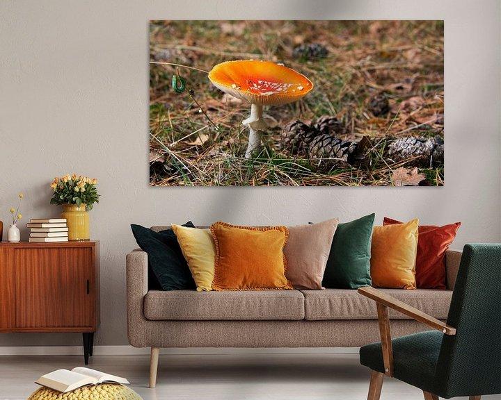 Sfeerimpressie: Amanita muscaria van Compuinfoto .