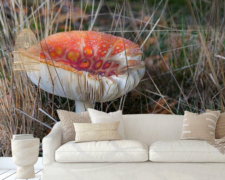 Sfeerimpressie behang:  Amanita muscaria or fly agaric  van Compuinfoto .