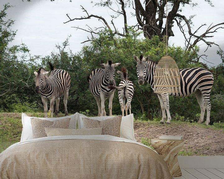 Sfeerimpressie behang: group of zebras  van Compuinfoto .