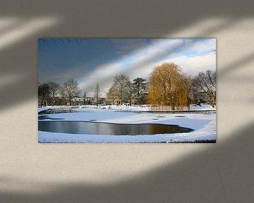 Winter in Leiden van Hans Winterink