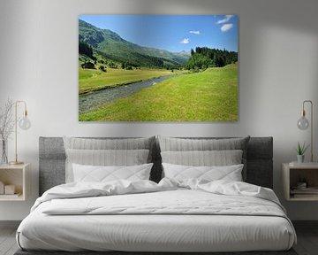 Rivier bij Olivone, Zwitserland van Peter Apers