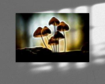 Neon Paddestoel van Hans Soowijl