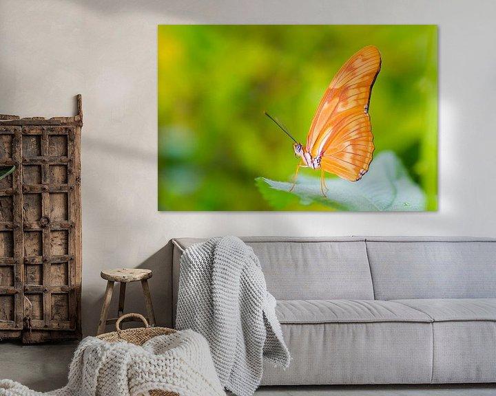 Sfeerimpressie: Vlinder passie van Pascal Marcelis