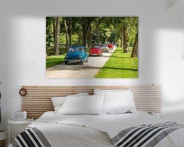 Fiat 500 Club, Schlossgarten Arcen sur Guido van Veen